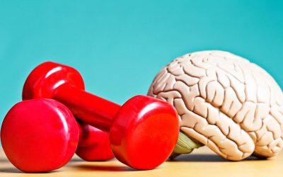 Mantener el cerebro sano hasta la vejez… ¿cómo?