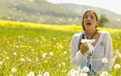 Ya estamos en primavera. Las alergias.