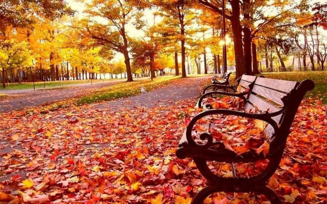Cuidarse en otoño